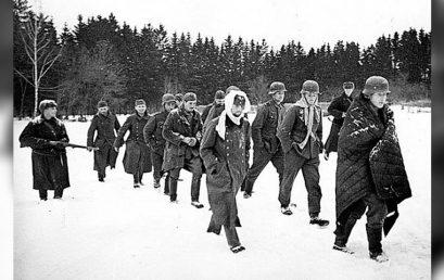 Зимой 1941 года немецкое командование даже не рассматривало вариант нашего контрнаступления